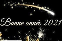 BONNE ANNÉE 2021 - Vignette
